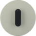 10012004 Cover Plate/Toggle Stainless Steel/Black